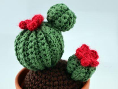 kwitnący kaktus ręcznie wykonany na szydełku